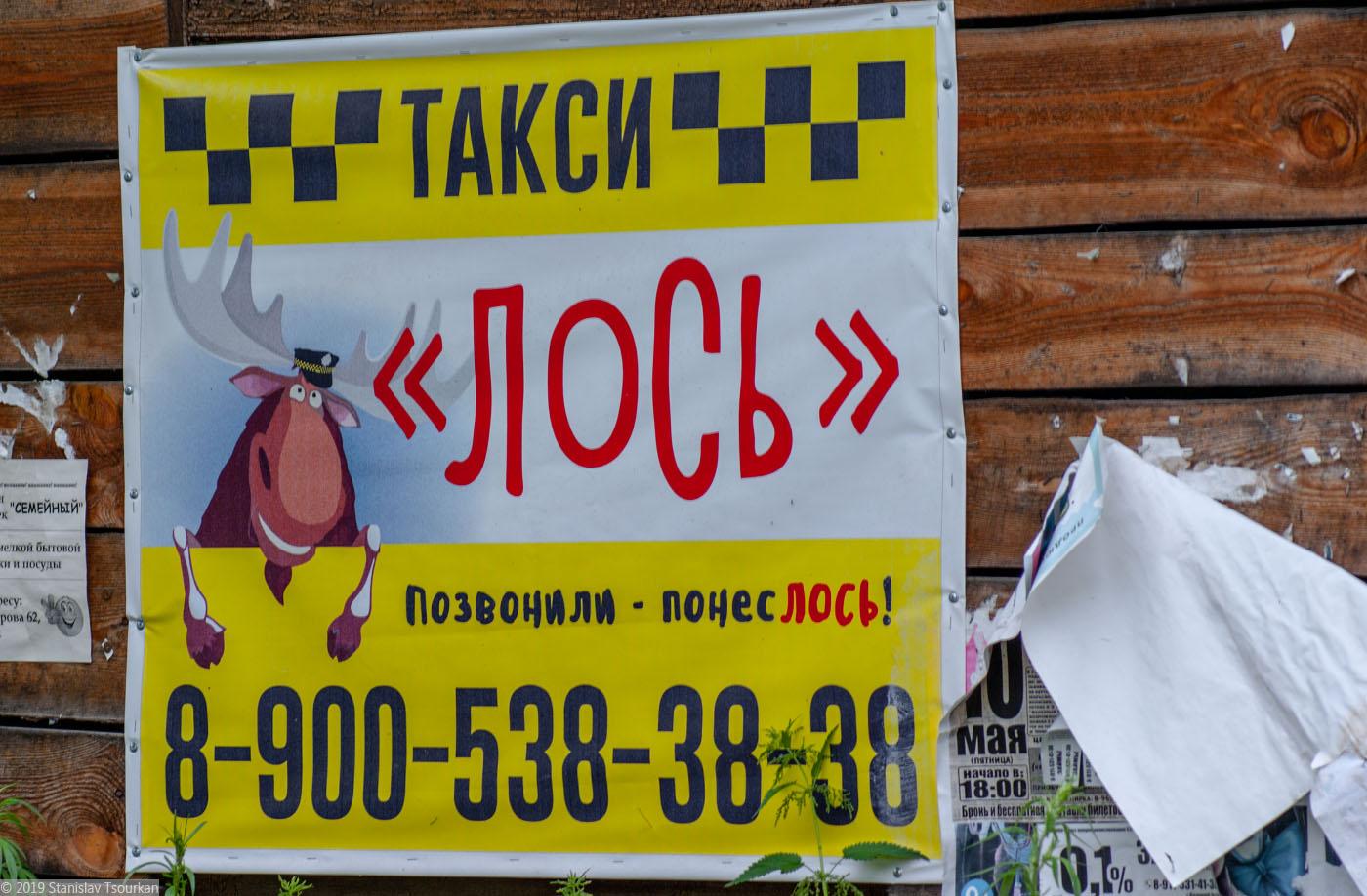 Вологодская область, Вологодчина, Великий устюг, Русский север, такси лось, лось