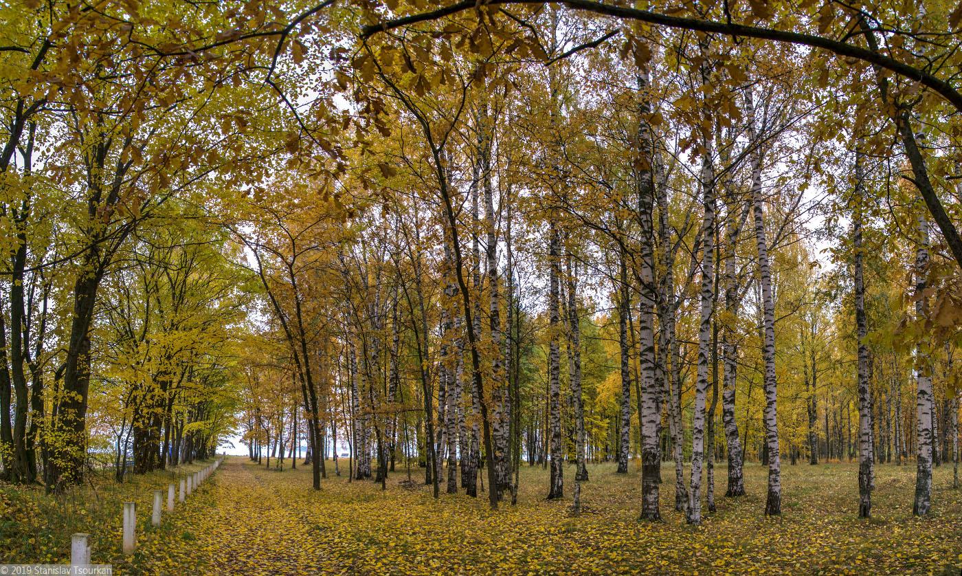 Весьегонск, Приморский парк, Рыбинское море, Рыбинское водохранилище, аллея, парк