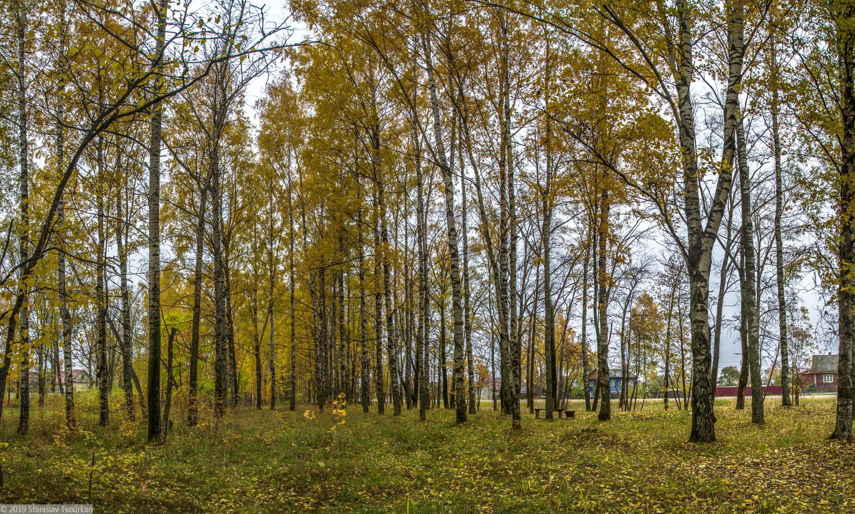Весьегонск, Тверская область, винзавод, парк, лесок, лесопарк