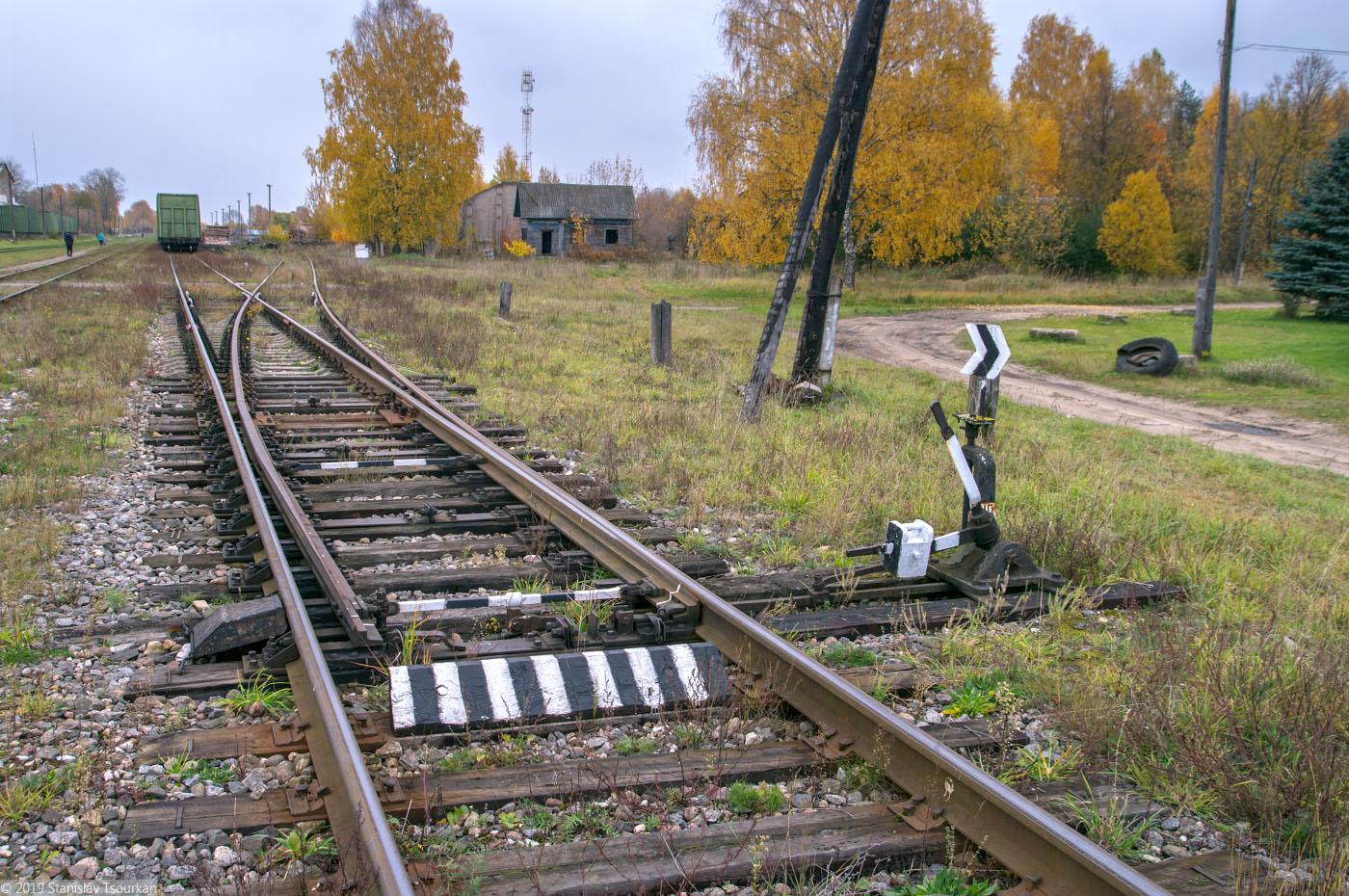 Весьегонск, Тверская область, ж/д, железная дорога, станция Весьегонск, ручная стрелка, стрелочный перевод, стрелка