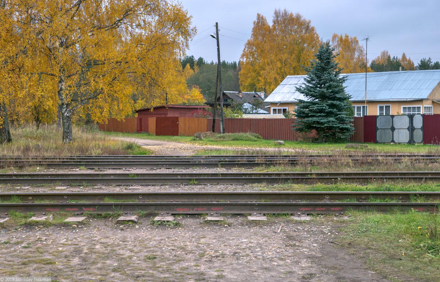 Весьегонск, Тверская область, ж/д, железная дорога, станция Весьегонск, шпалы, деревянные шпалы