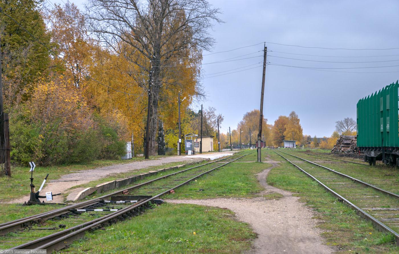 Весьегонск, Тверская область, станция Весьегонск, платформа, ручная стрелка, стрелка