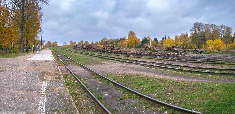 Весьегонск, Тверская область, ж/д, железная дорога, станция Весьегонск, лесозаготовка