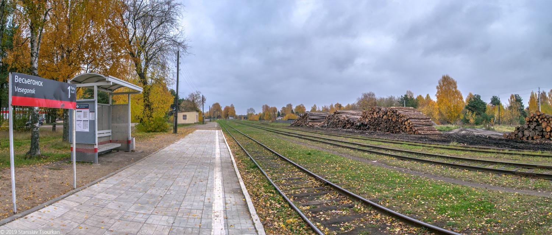 Весьегонск, Тверская область, ж/д, железная дорога, станция Весьегонск, платформа