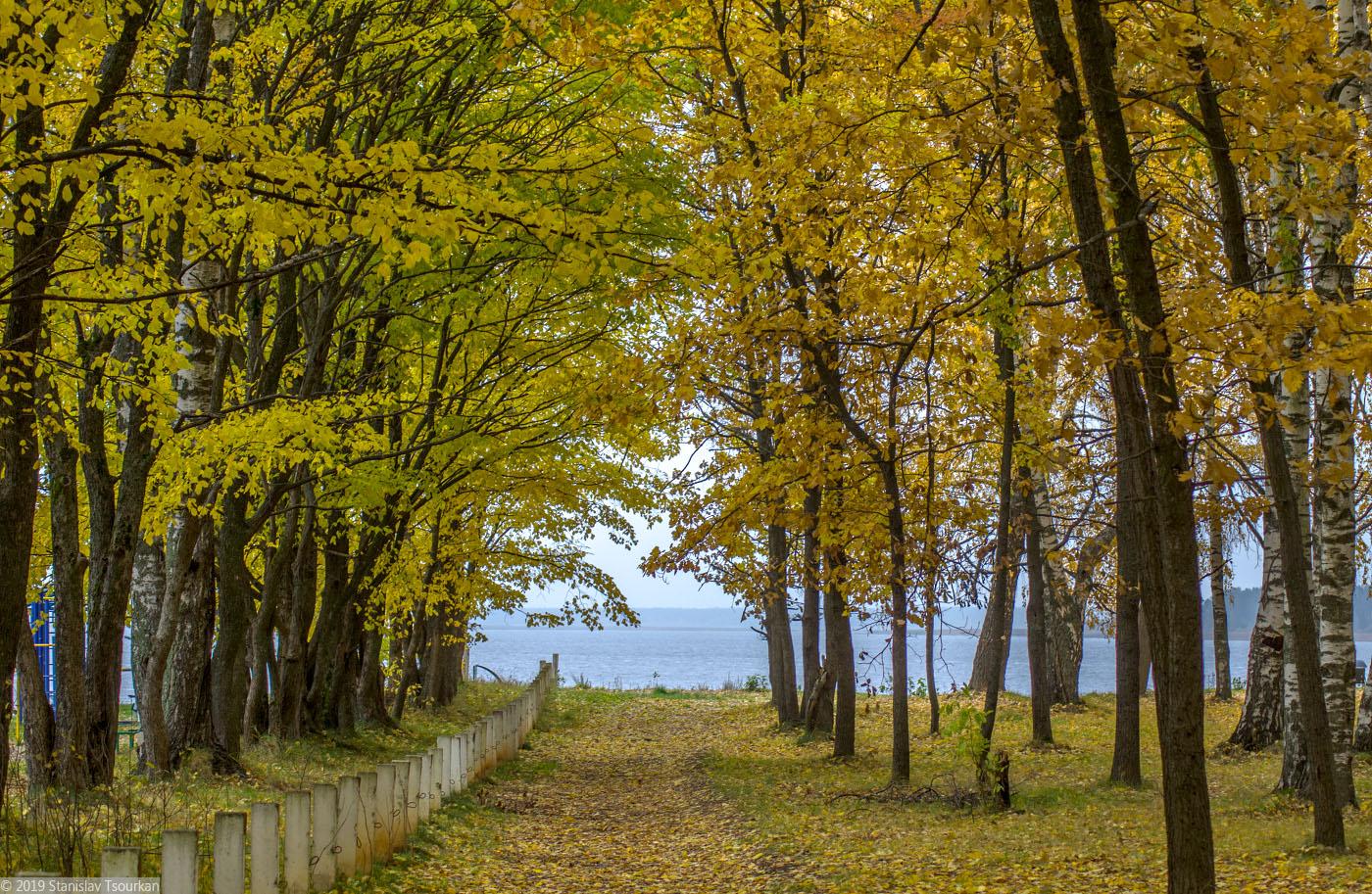 Весьегонск, Приморский парк, Рыбинское море, Рыбинское водохранилище, аллея, лес, парк