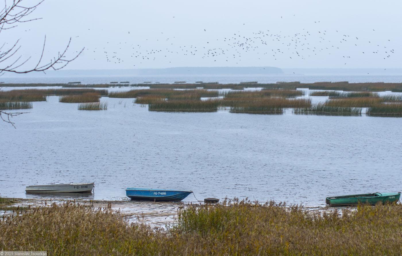 Весьегонск, лодки, Рыбинское море, Рыбинское водохранилище