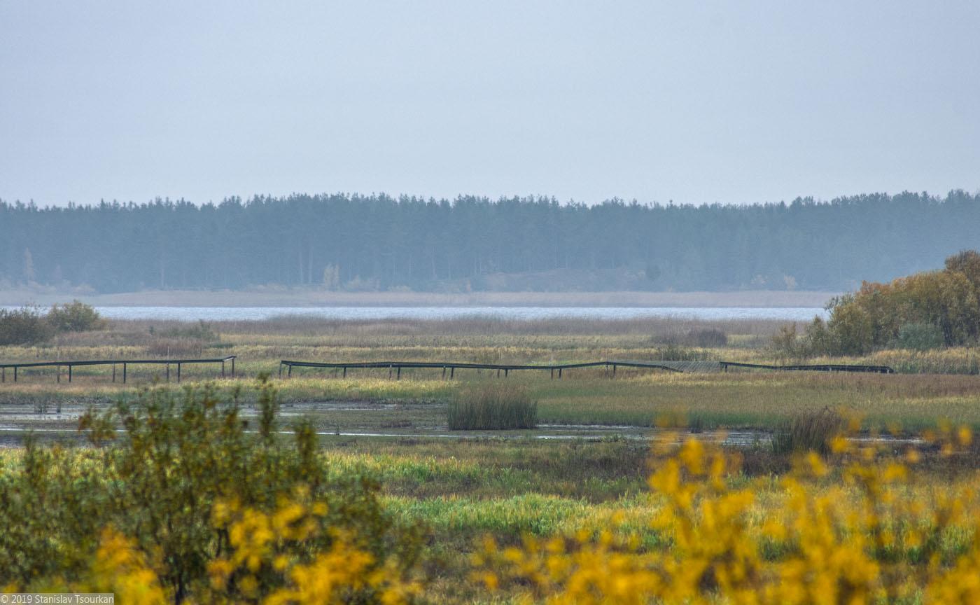 Весьегонск, Тверская область, Рыбинское водохранилище, мостки, мостик