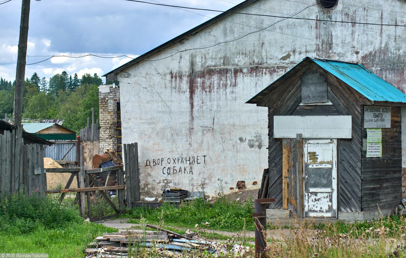 Лахденпохья, Карелия, республика Карелия, двор охраняет собака