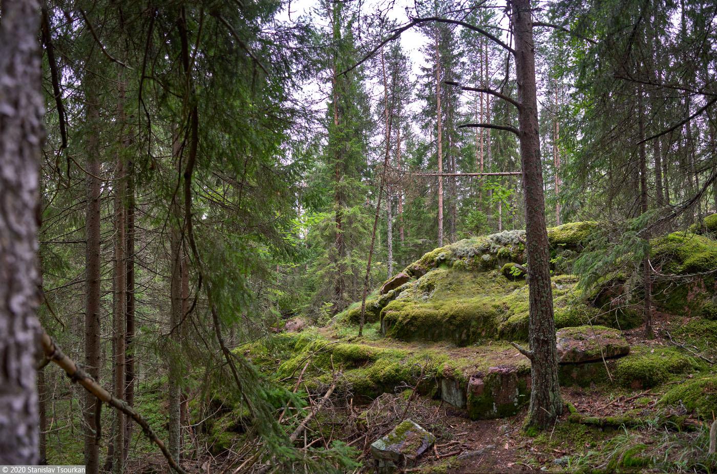 Карелия, республика Карелия, гора, Хийденвуори, пейзажи, природа